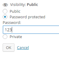 password protected WordPress menu